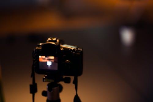 Základová fotografie zdarma na téma canon, černá, dslr, fotoaparát