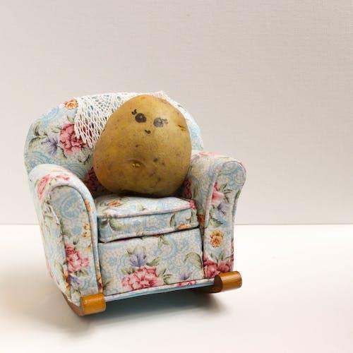 Free stock photo of couch potato, food, potato