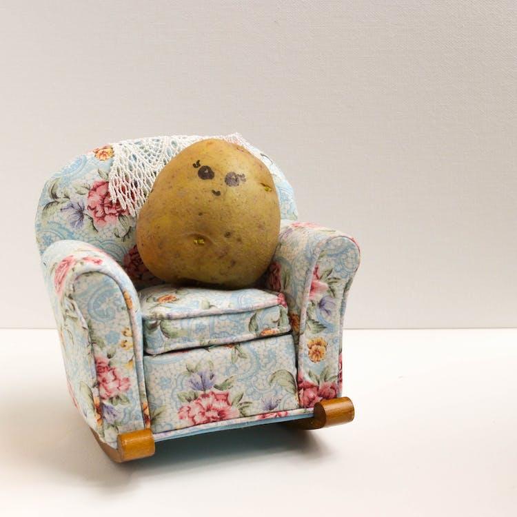 couch potato, food, potato