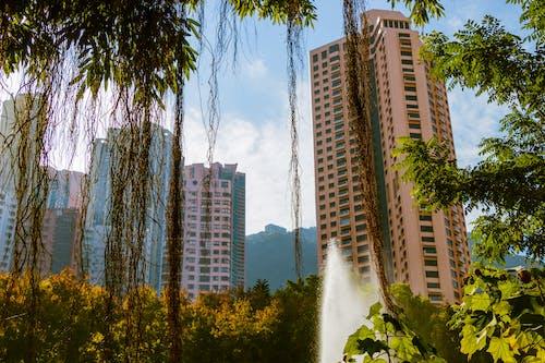 Kostenloses Stock Foto zu apartmentgebäude, asiatische architektur, bäume, himmel