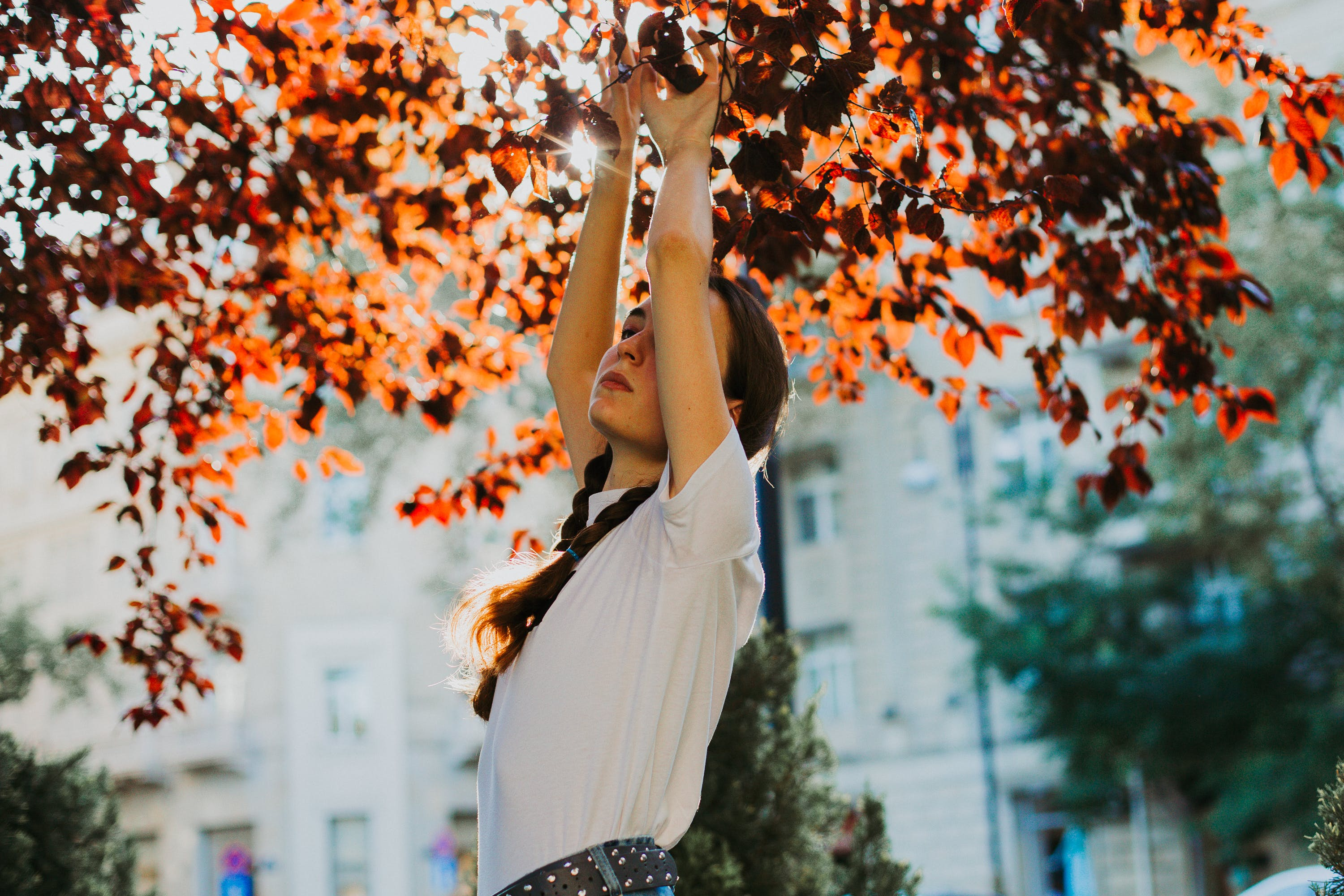Selective Photo of Woman Raising Her Hands Underneath Tree