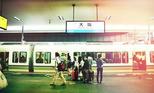 Gratis stockfoto met bezet, Japan, mensen, oefenen