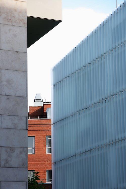 Kostnadsfri bild av arkitektur, byggnad, fönster
