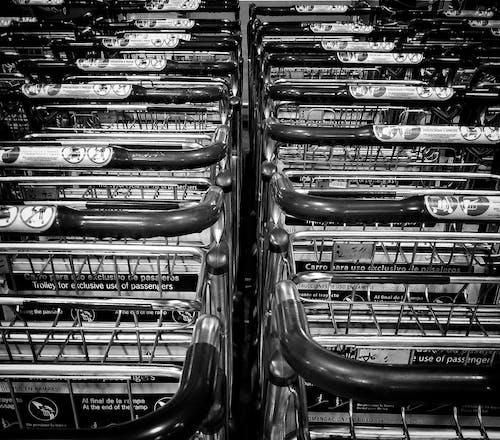 Foto stok gratis berbelanja, hitam dan putih, kereta belanja