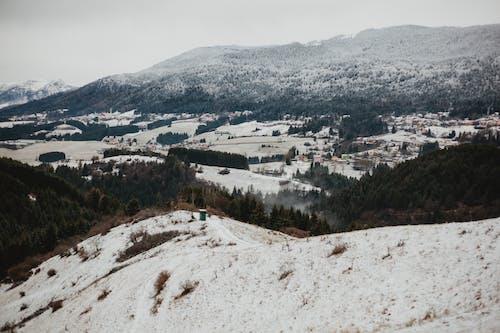 Δωρεάν στοκ φωτογραφιών με βουνά, γρασίδι, γραφικός, δέντρα