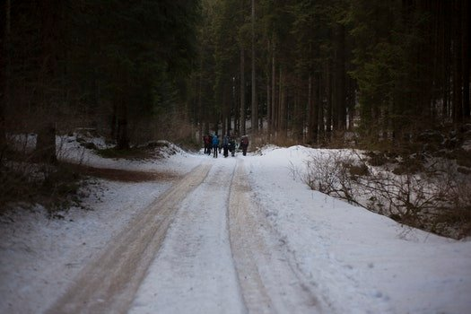 People Walking on Icy Road