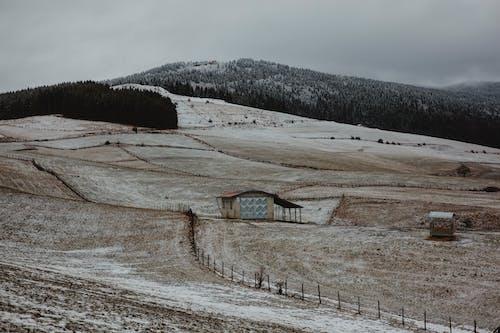 Foto stok gratis alam, awan, beku, bidang