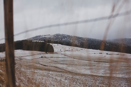 Kostenloses Stock Foto zu bäume, berge, drahtzaun, einfrieren