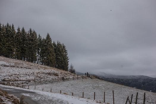 Kostenloses Stock Foto zu kalt, schnee, straße, landschaft