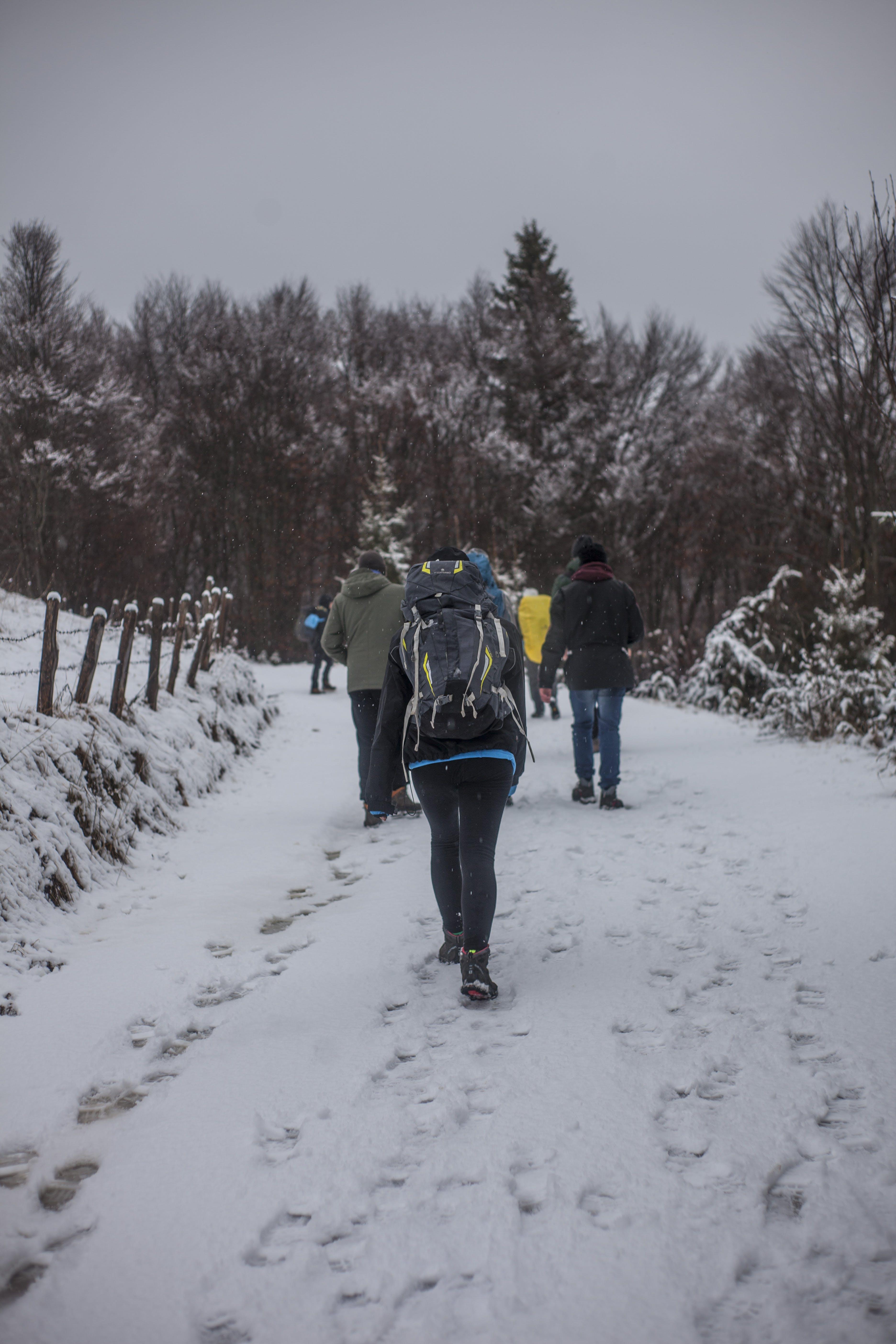 People Walking on Snowy Road during Winter