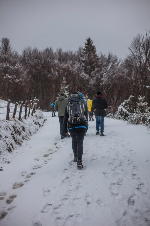People Walking on Snowy Road during Winter