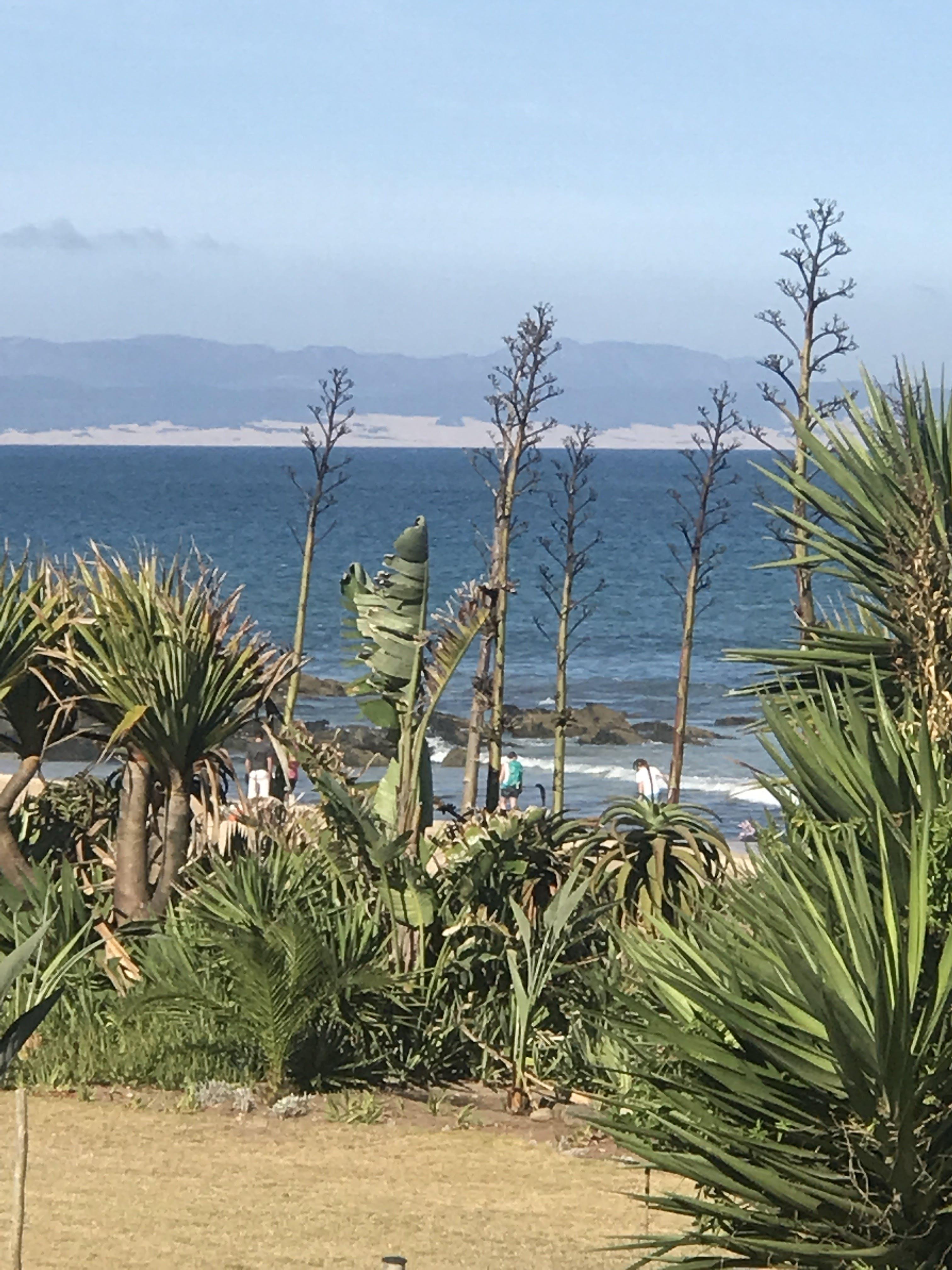 Free stock photo of beach, holiday, ocean