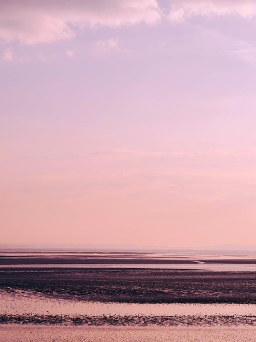 Free stock photo of beach, pink