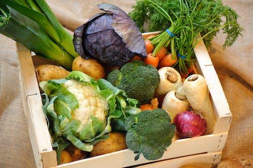 新鮮な野菜の無料の写真素材
