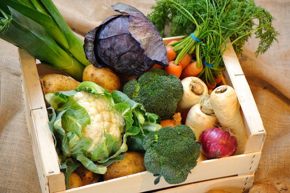 Free stock photo of fresh vegetables