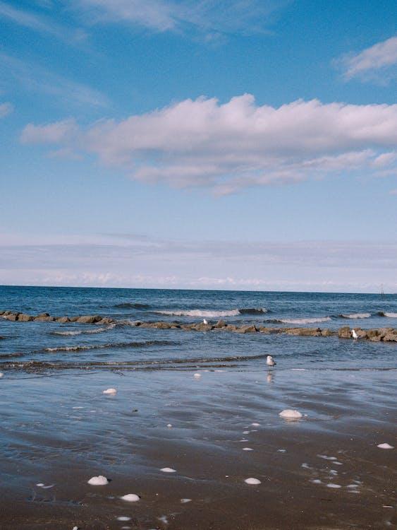 Sea Waves Crashing on Shore Under Blue Sky