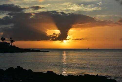 Gratis lagerfoto af kanariefugl, landskab, lanzarote, lys