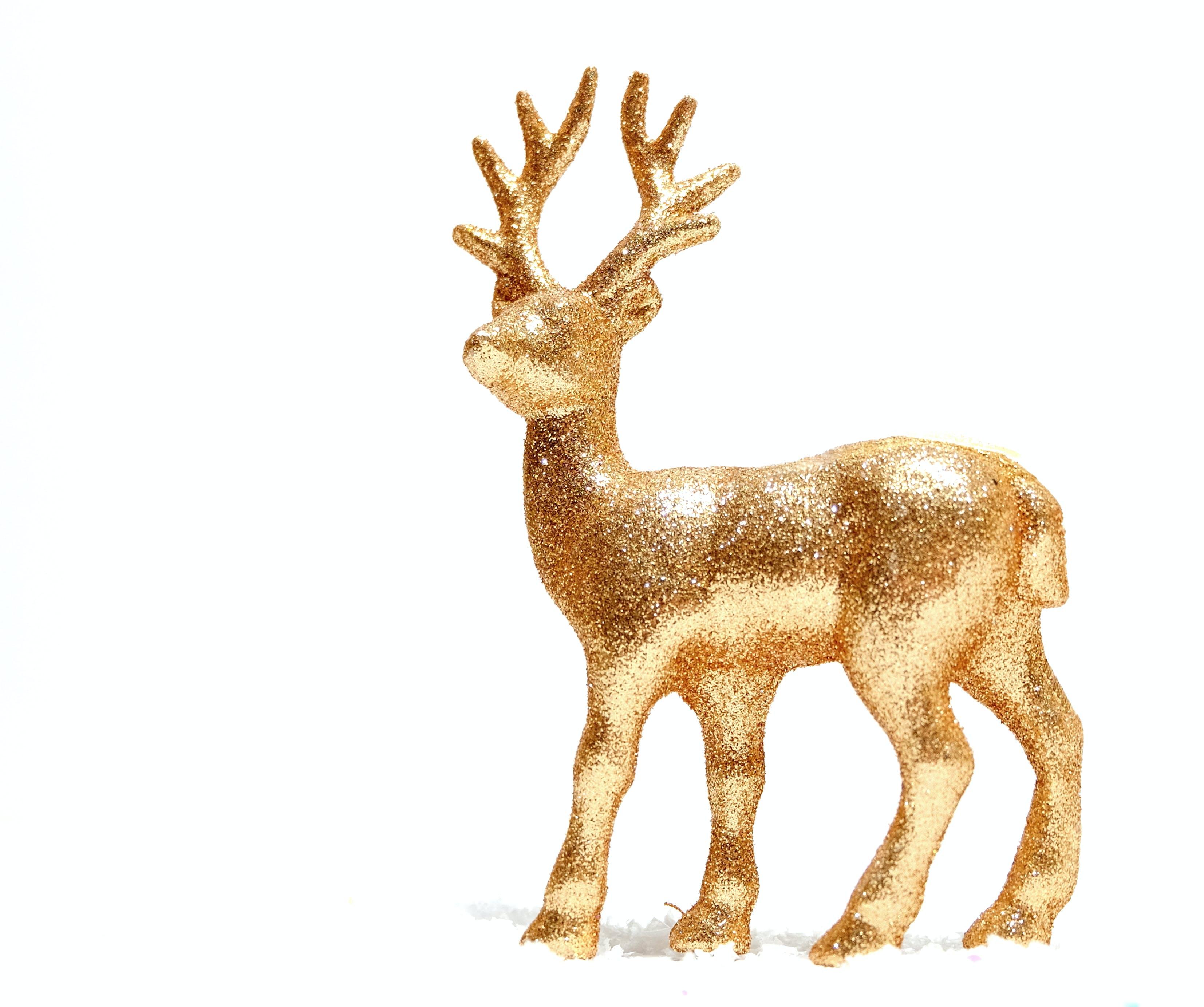 Free stock photo of christmas, decoration, gold, noel