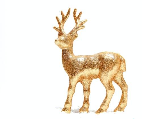 Free stock photo of christmas, gold, noel