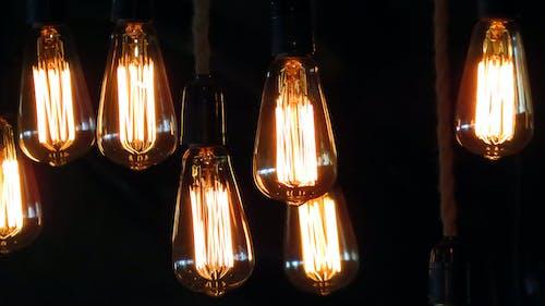 Free stock photo of filaments, lightbulbs, lights