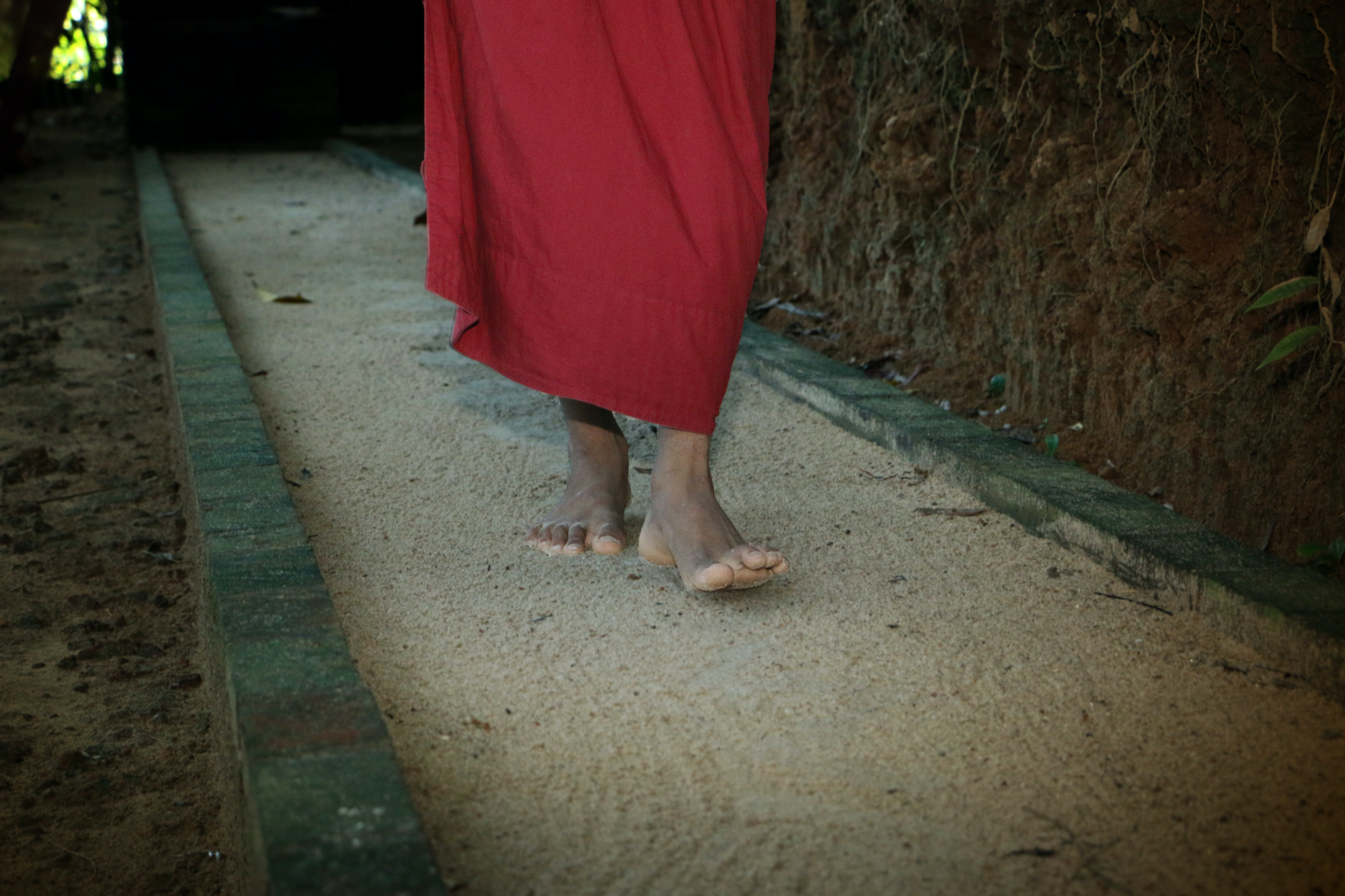 Бесплатное стоковое фото с aparekka, dhayana, mahamevnawa, mahaviharaya
