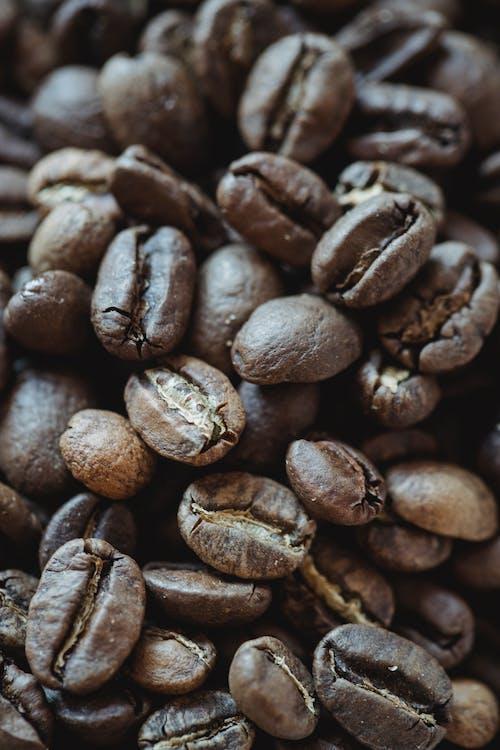 Immagine gratuita di arrostito, caffè, caffeina
