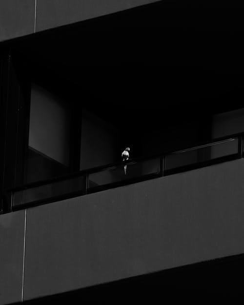 Black Handrail on Gray Structure