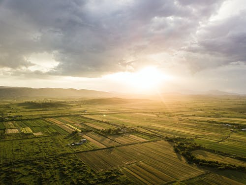 Agricultural Land Under Bright Cloudy Sky