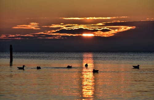 Free stock photo of Baltic, Baltic Sea, cloud, light