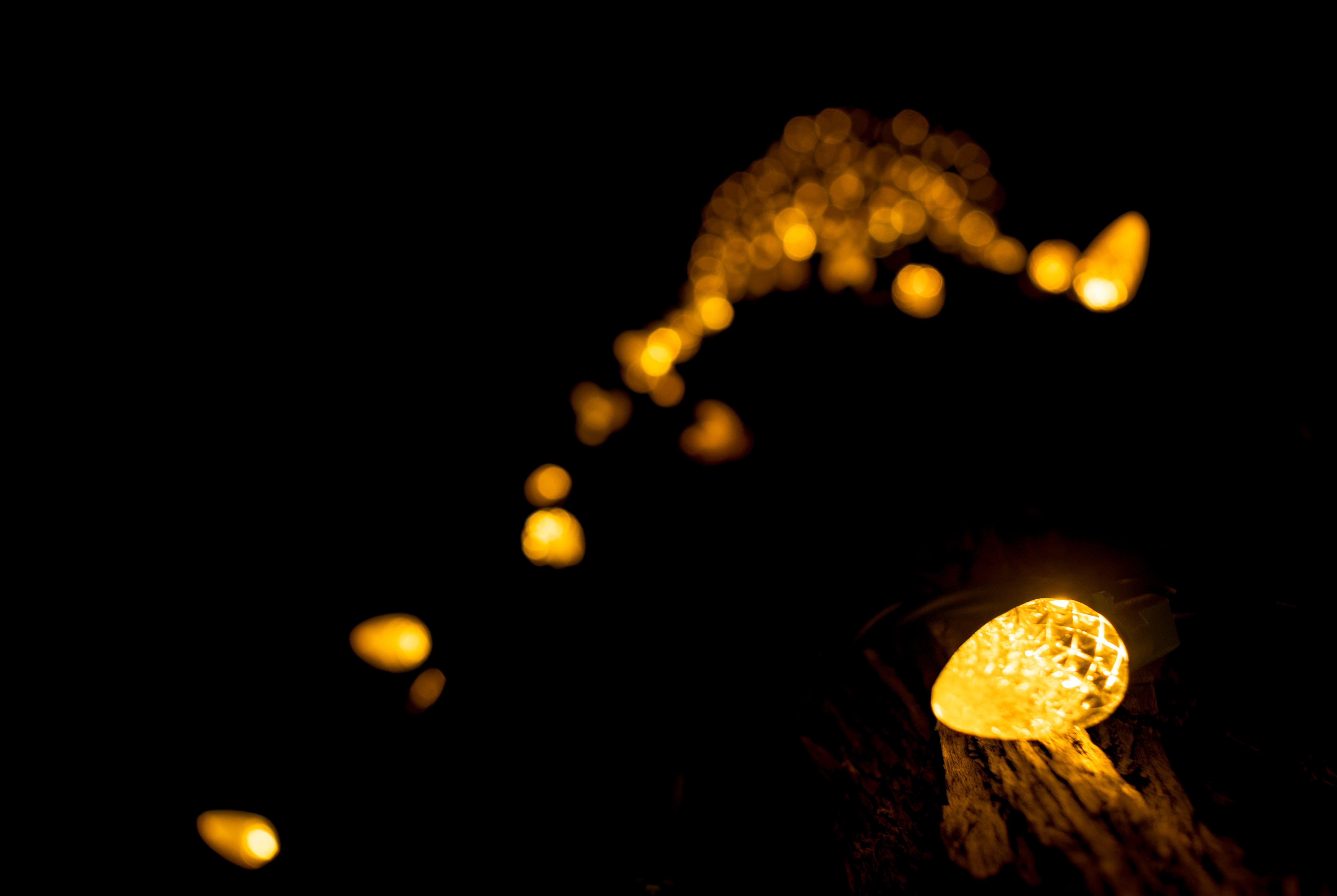 Free stock photo of blurry, bokeh, christmas lights, dark
