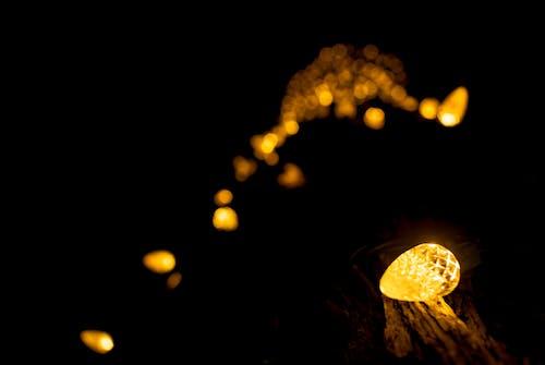 açık, ağaç, bulanık, gece içeren Ücretsiz stok fotoğraf