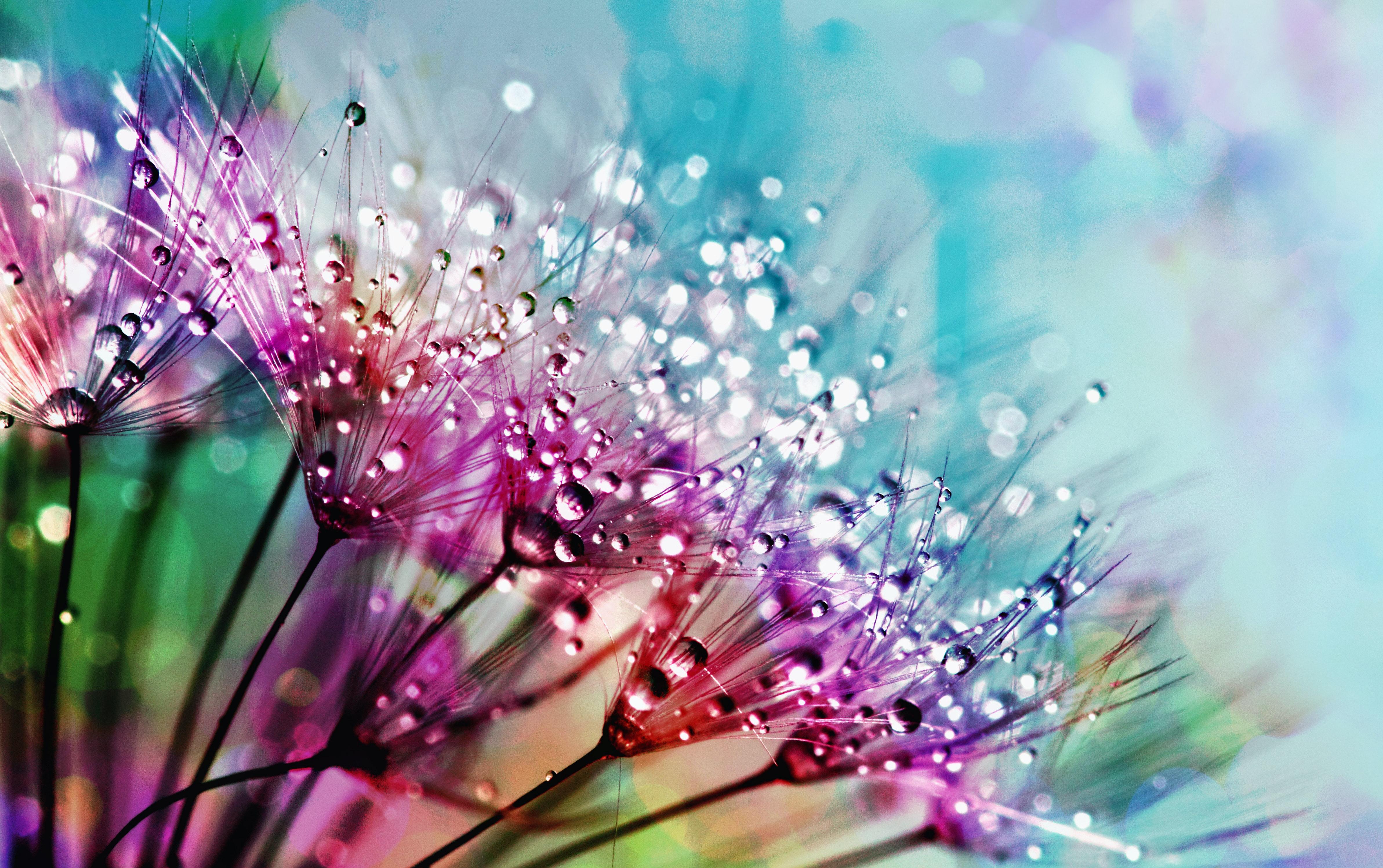 Desktop love Colorful wallpapers
