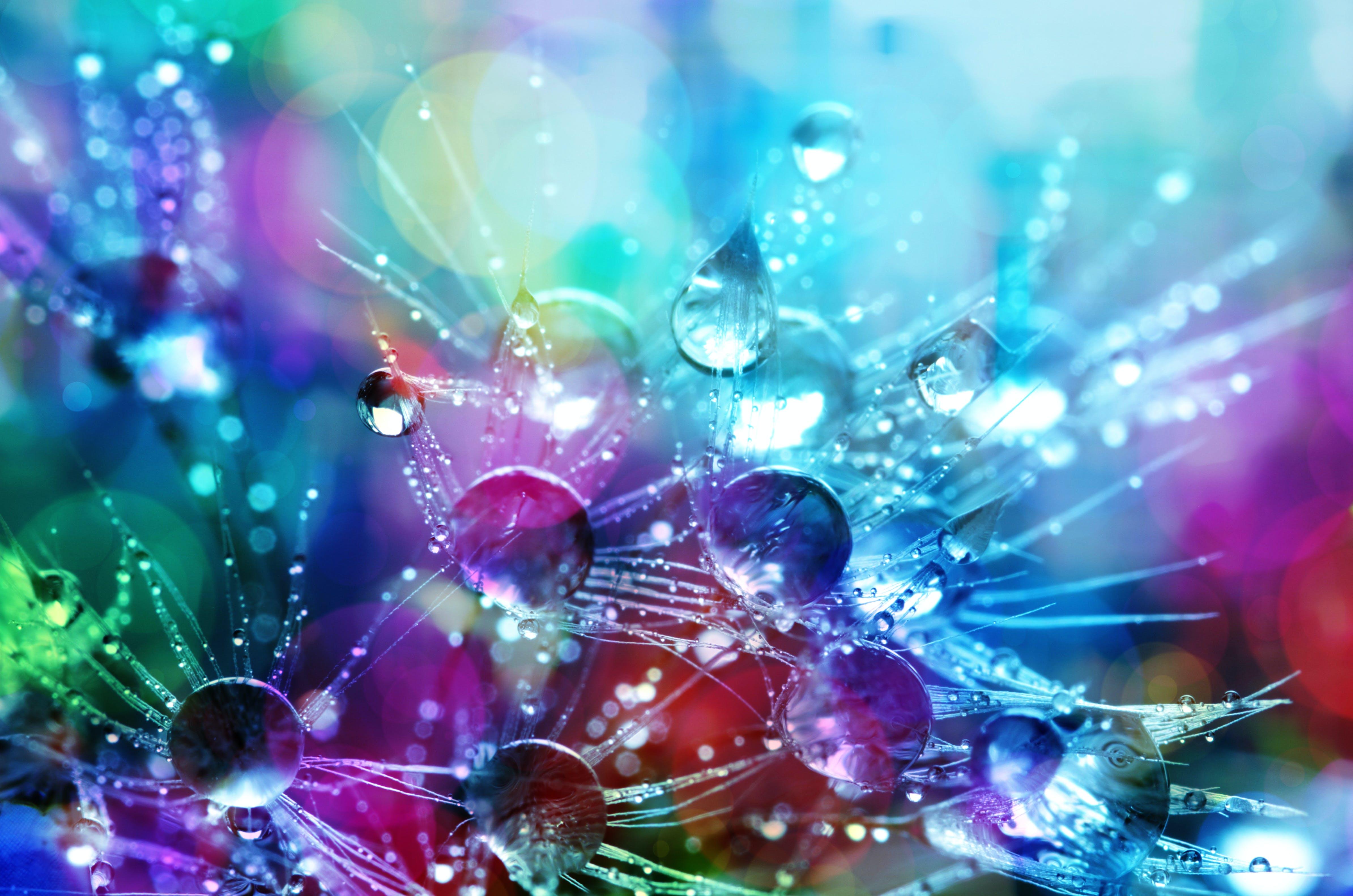 Bokeh Shot of Water Droplets
