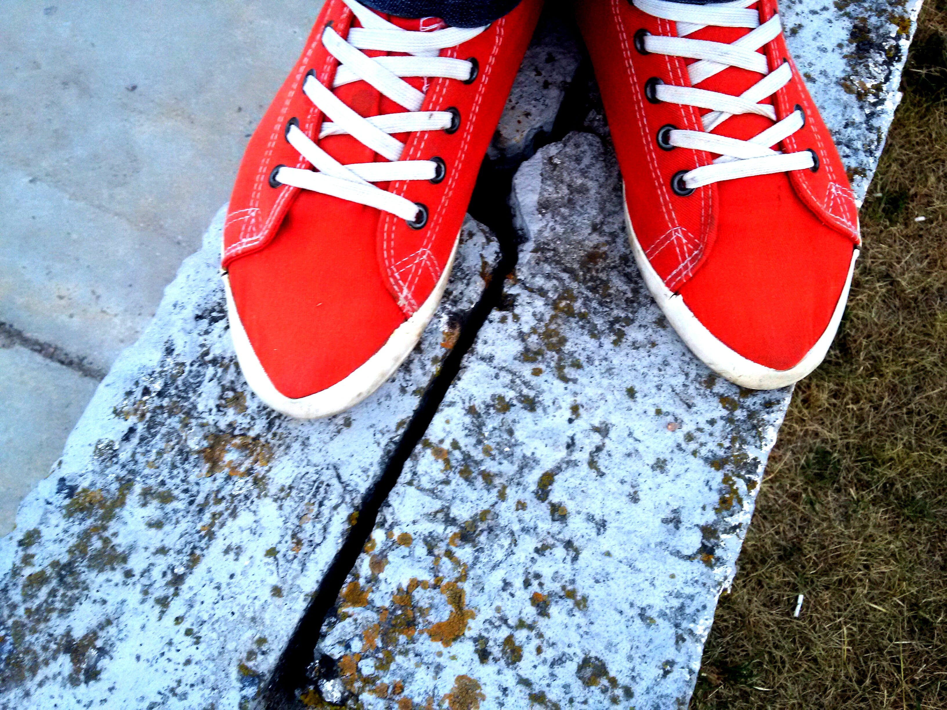 Free stock photo of closeup, red, sneakers
