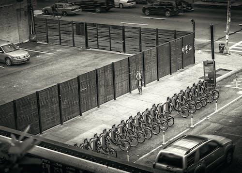 Imagine de stoc gratuită din alb-negru, biciclete, drumuri, îmbracă