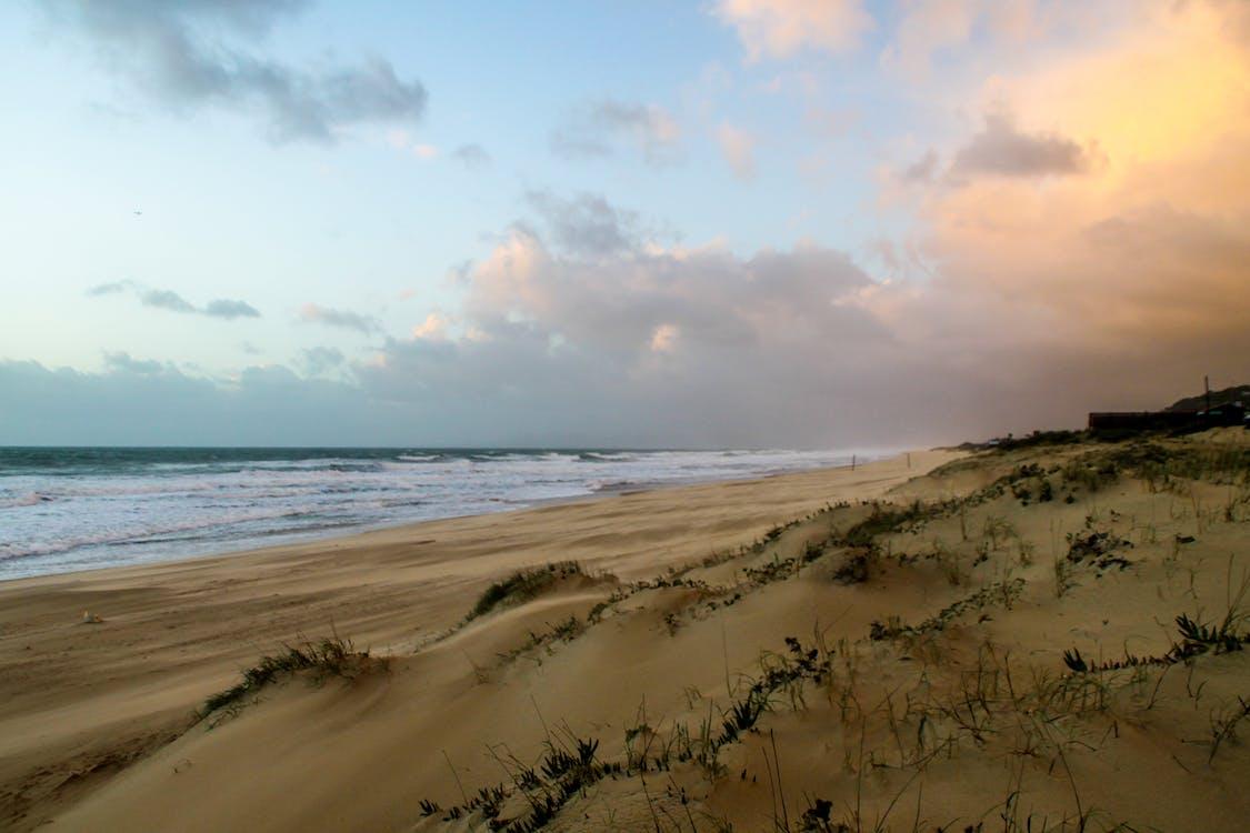 agua, arena, césped
