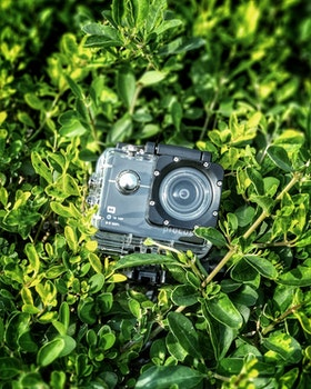 Gray and Black Action Camera on Green Leaves Plants