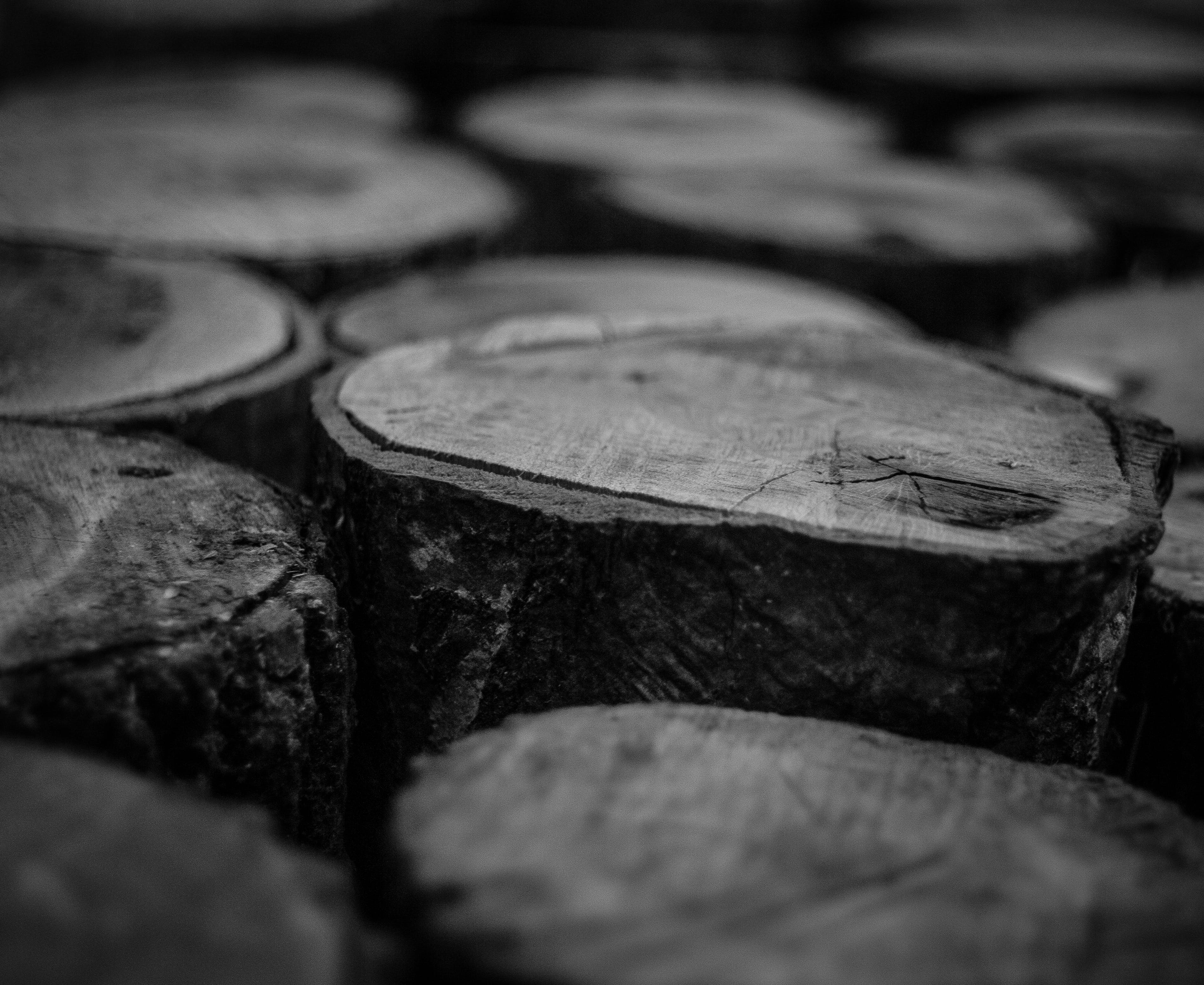 Grayscale Photo of Wood Logs