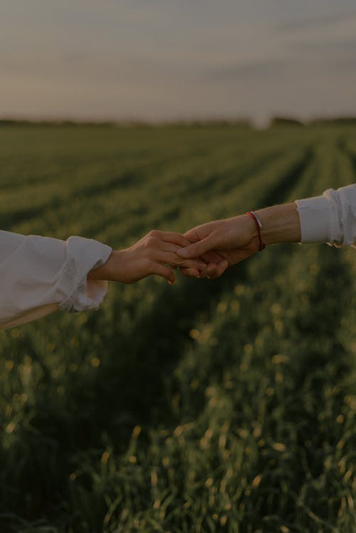 Person in White Long Sleeve Shirt Holding Hands With Man in White Dress Shirt