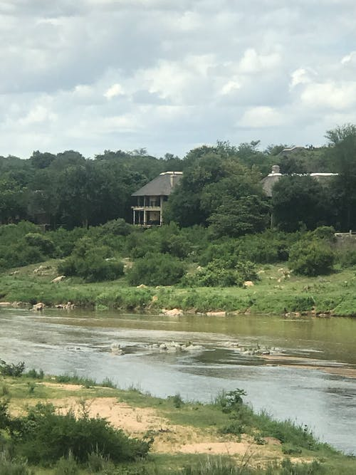 Free stock photo of River lodge, river view