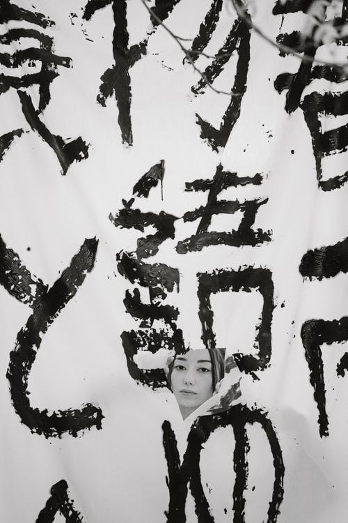 Imagine de stoc gratuită din afiș, alb-negru, arc