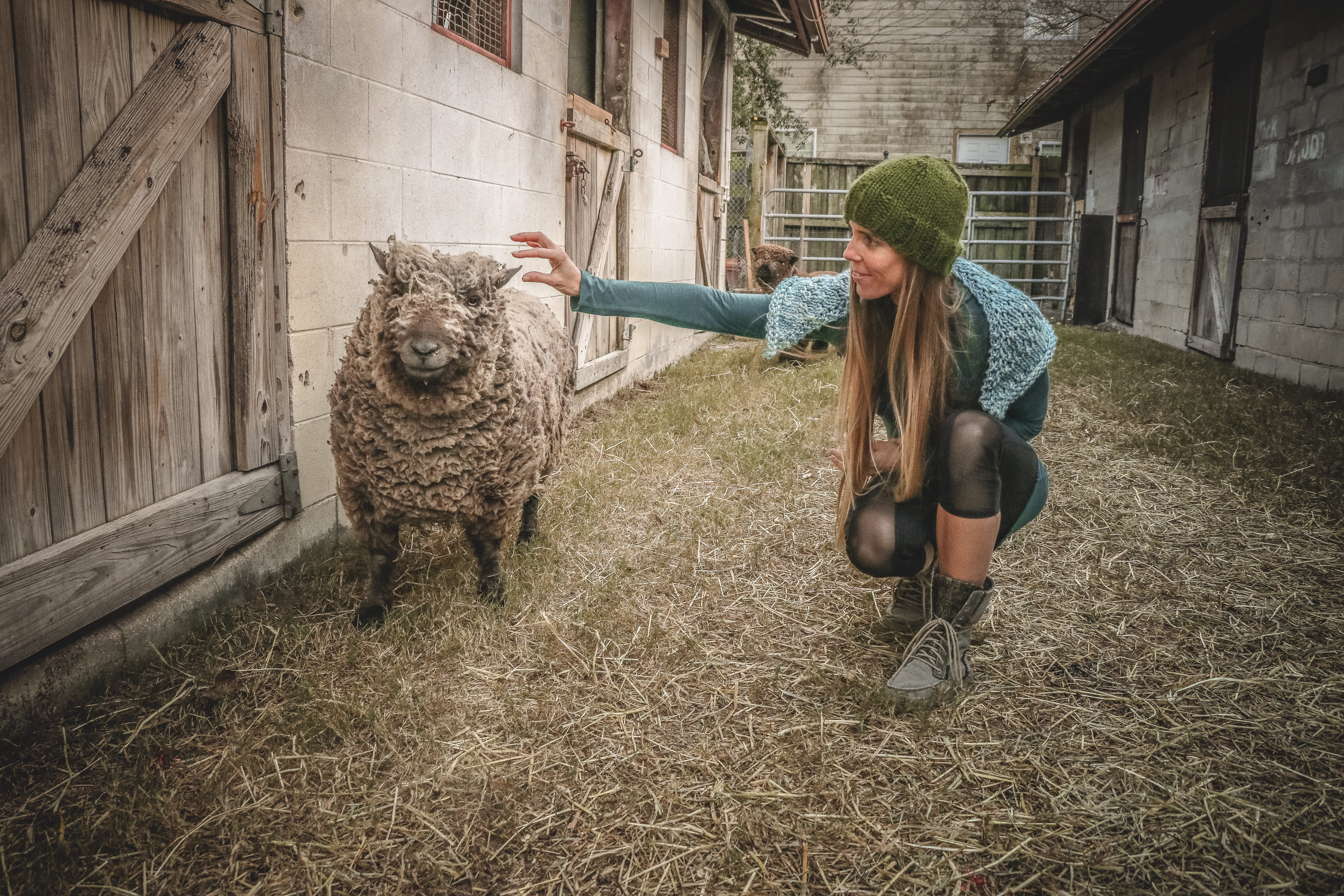 Woman Holding Sheep Beside Wall