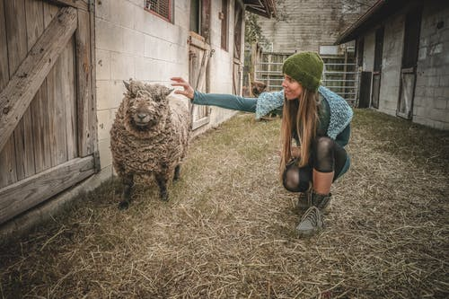 Woman Holding Sheep Beside Wall