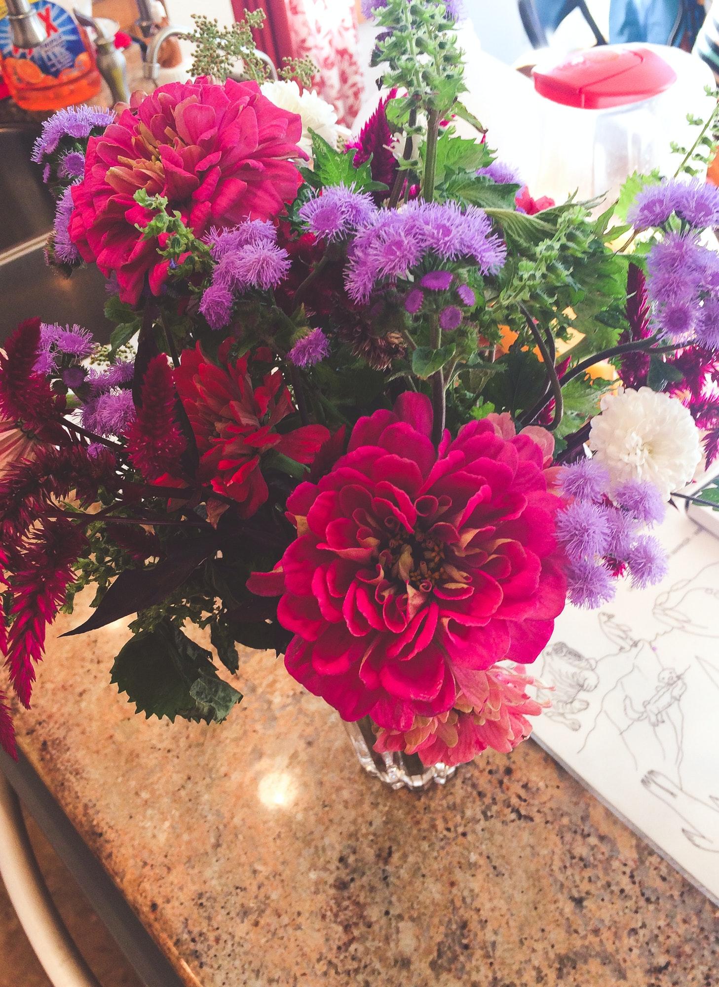 Free Stock Photo Of Birthday Flowers