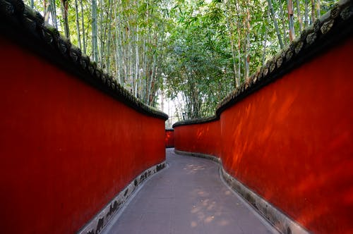 Red and Gray Pathway Near Trees
