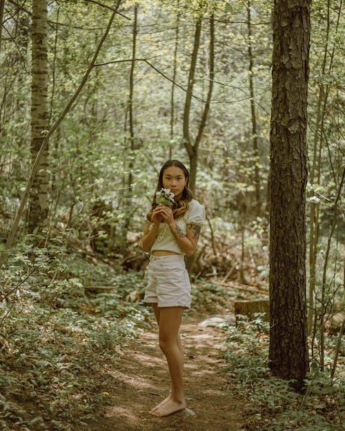 Fotos de stock gratuitas de abundancia, árbol, arboleda