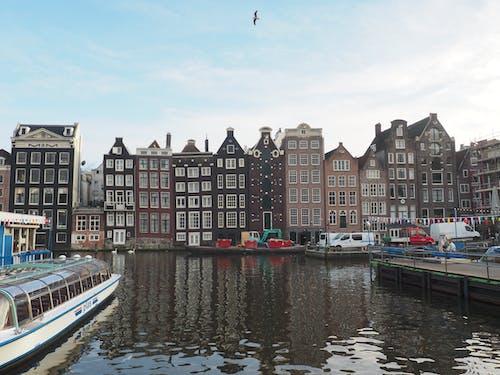 Immagine gratuita di acqua, architettura, auto, barca