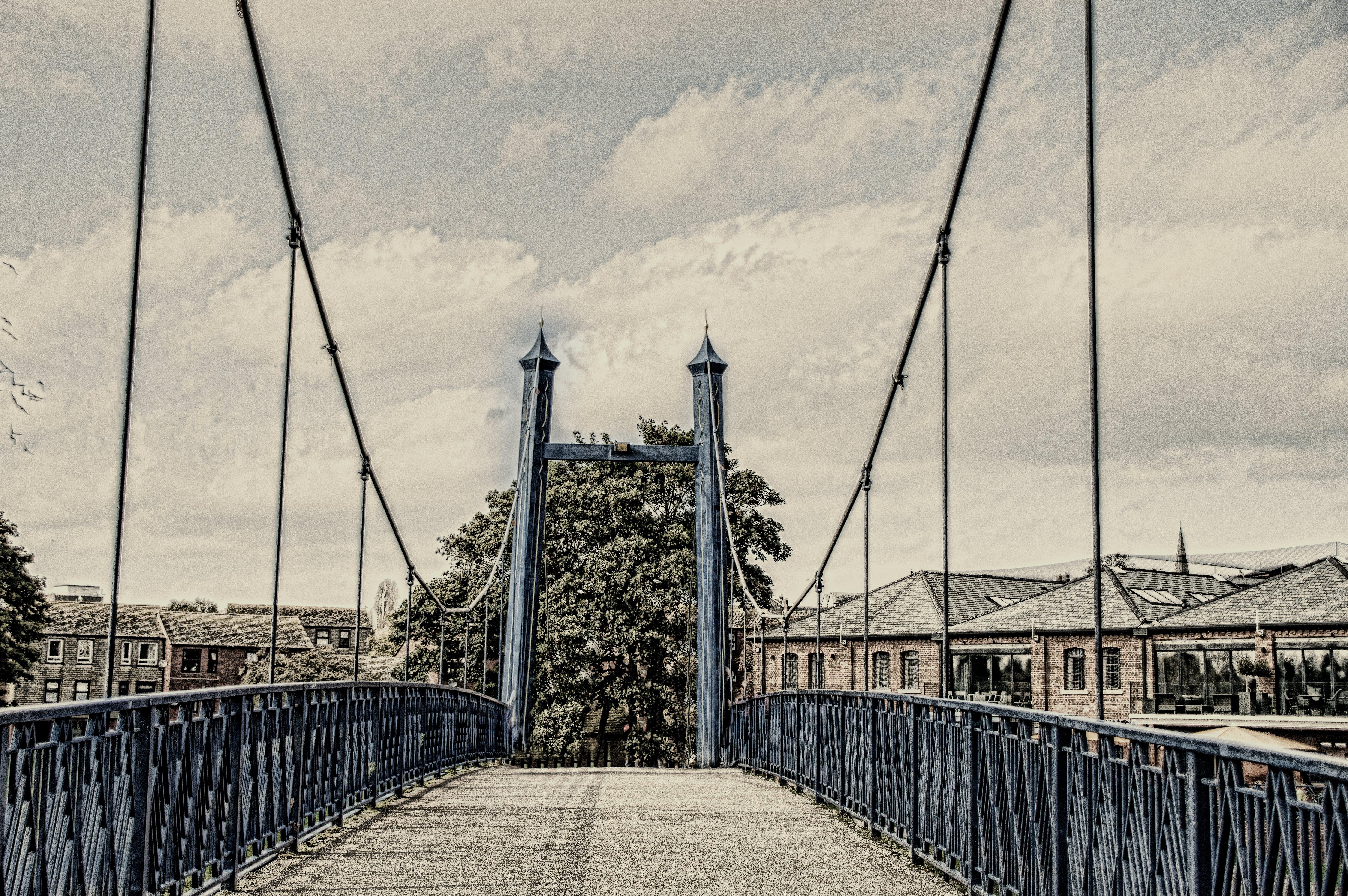 Free stock photo of bridge, walkway, platform, ropes