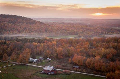 Imagine de stoc gratuită din apus, arbori, câmp, case