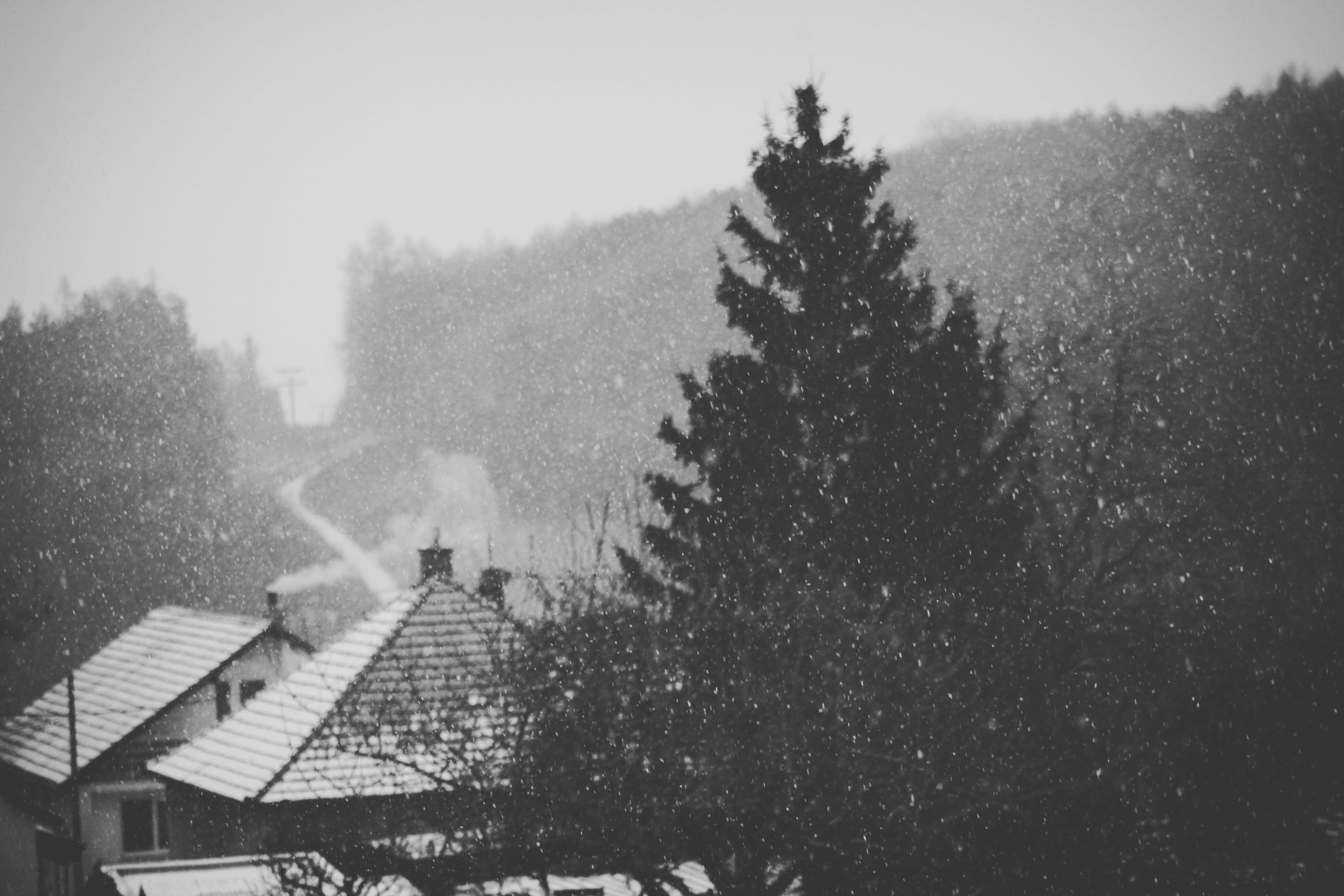 Kostenloses Stock Foto zu bäume, berg, dächer, draußen
